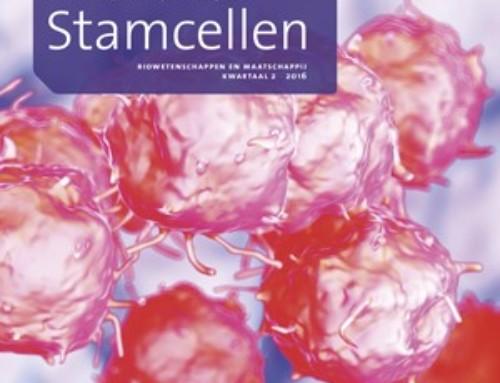 Alles over stamcellen in nieuw cahier van Biowetenschappen en Maatschappij